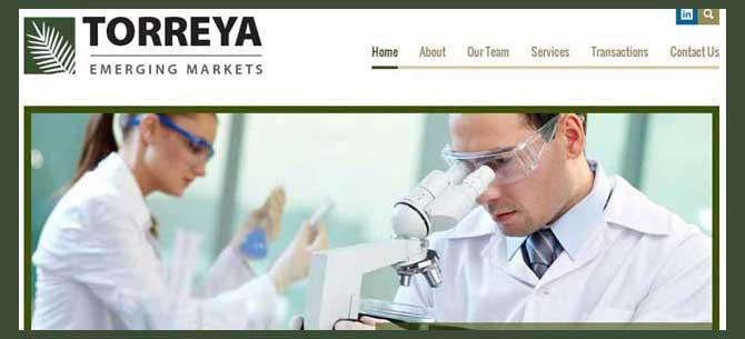 Torreya Emerging Markets